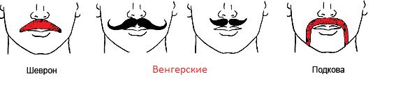 Как определиться с формой усов